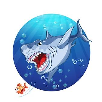 サメは小さな魚を追いかける