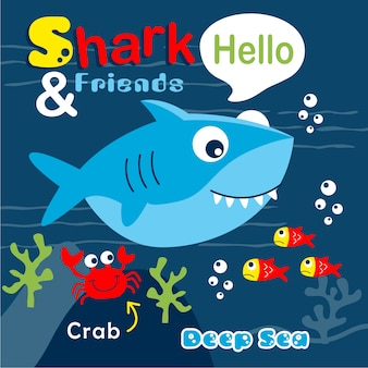 Shark and friends