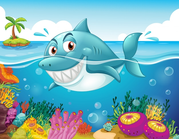 A shark in the sea with corals