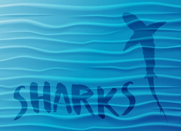 Силуэт акулы в глубоком море. фон волны голубой воды с акулой, образец текста и копией пространства. векторные иллюстрации.
