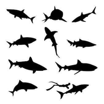 Силуэт акулы, изолированные на белом фоне