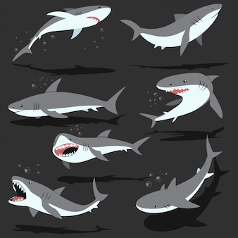 Sharks cartoon character set isolated