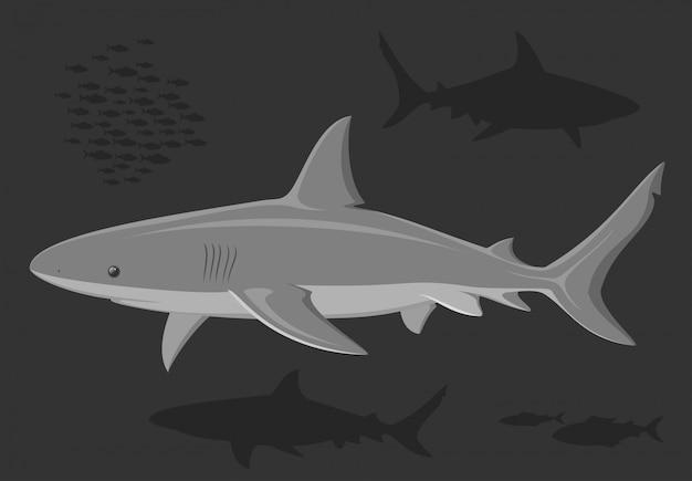 深海でサメ。