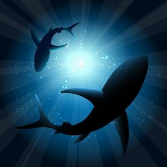 水中のサメ。海の魚、動物の自然の生活、水泳の野生生物、