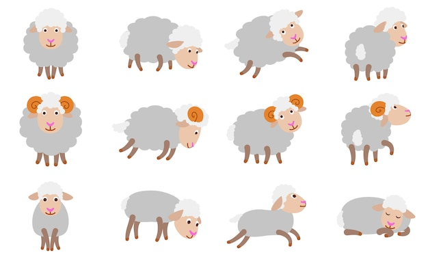 Sheep set, flat style