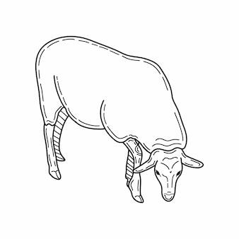 羊のスケッチスタイル。美しい黒と白の動物の手描きイラスト。ビンテージスタイルで描くラインアート。