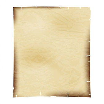 Sheet of old paper on white