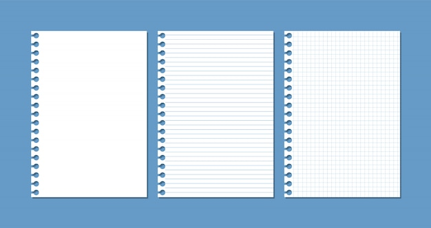 Sheets of paper from a notebook or notepad