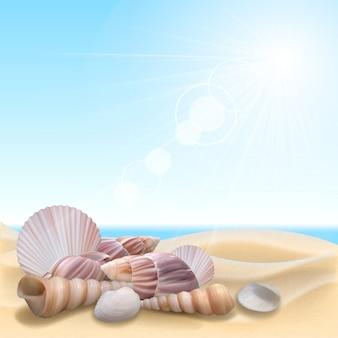 ビーチでシェル。夏休みイラスト