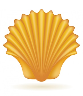 Shell sea vector illustration
