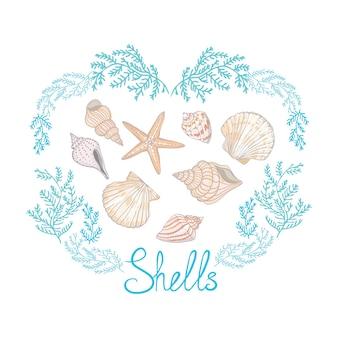 貝殻とレタリングとシェルええベクトルイラスト。