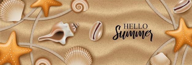 Ракушки и морские звезды на фоне песка