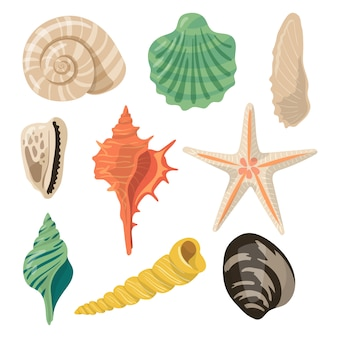 Shells of sea in sand. aquatic vector icons in cartoon style.