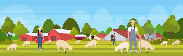 Shepherd with stick herding flock of white sheep farmers team breeding sheep eco farming wool farm concept farmland countryside landscape  full length horizontal