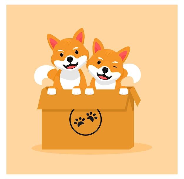 Shiba inu in the box doggy in flat design