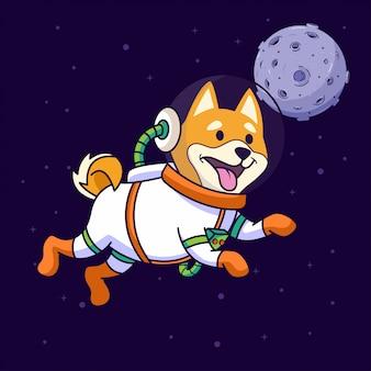 スペースを飛んでいる柴犬犬