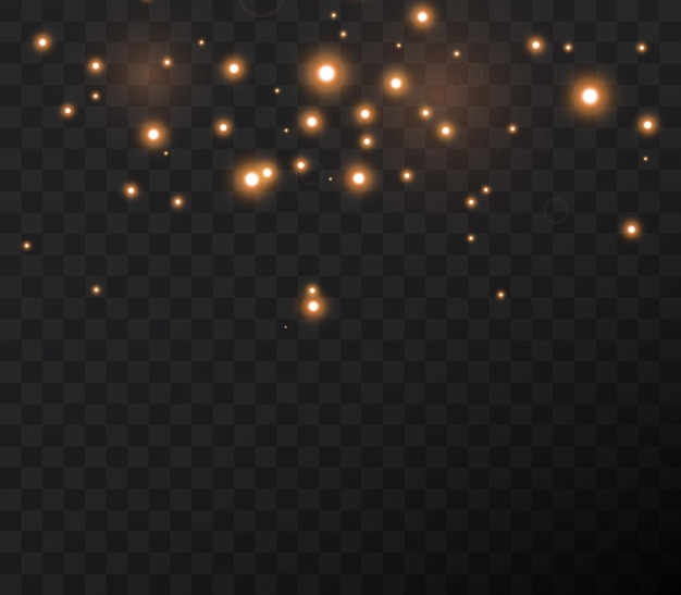 빛나는 별이 밤새 날아