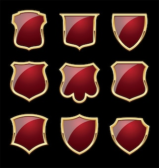 Shinny shield with gold frames