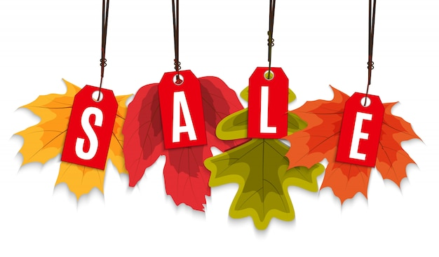 Shiny autumn leaves sale banner. business discount card