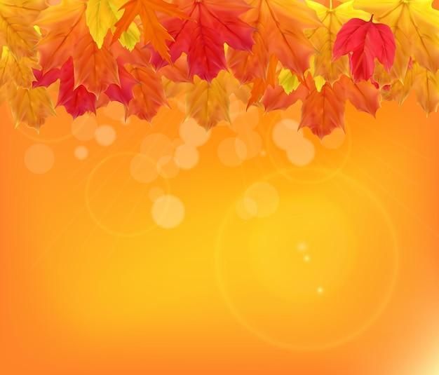 Shiny autumn natural leaves background. vector illustration eps10