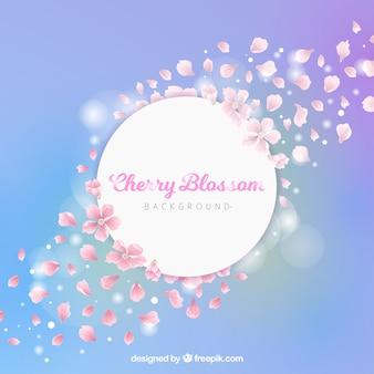 Блестящий фон из цветущей вишни