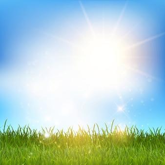 Shiny grassy landscape