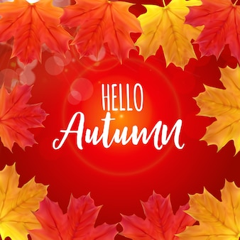 Shiny hello autumn natural leaves background.