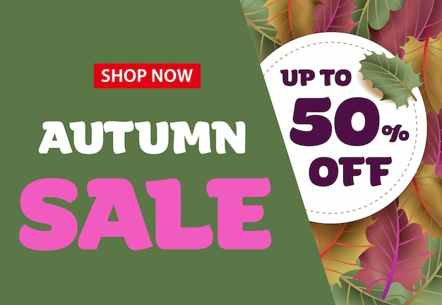 Shop now autumn sale lettering with leaves. autumn offer or sale advertising
