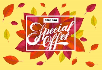 今すぐ購入する明るいカラフルな葉を使ったスペシャルオファーレター。