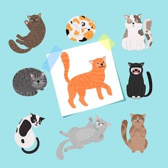 短髪の猫のイラスト。青い背景に分離された漫画の猫のコレクション、ふわふわの子猫の品種図面ベクトル図