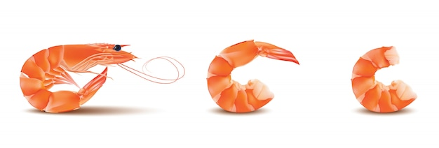 Shrimp or prawn with head and legs.