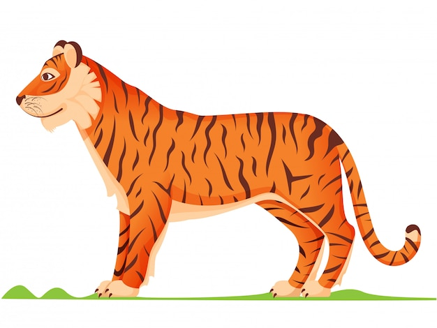 Side view cartoon tiger in orange and brown color.