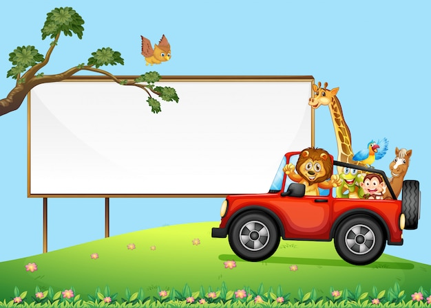 A sign board and wild animals