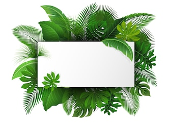 Sign with text space of Tropical Leaves