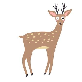 Sika deer antlers