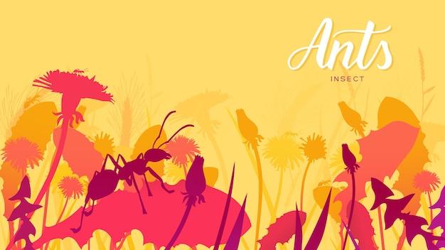 シルエットアリは茂みの中の草の葉に沿って忍び寄ります。野生の概念における昆虫の生活。