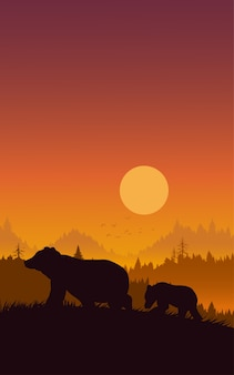 Silhouette bear and sunset.
