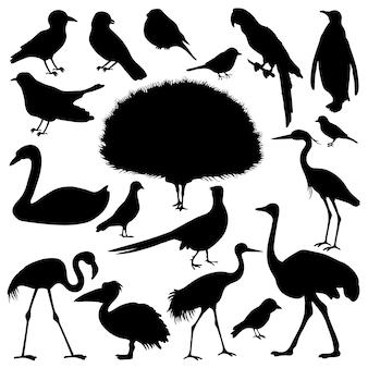 Silhouette of birds. Premium Vector