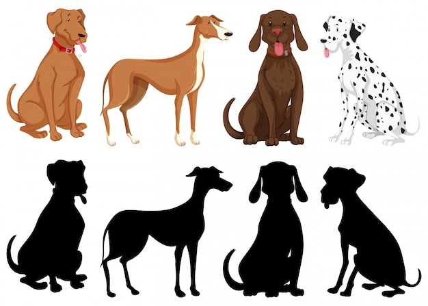 Silhouette, color and outline version of dogs isolated