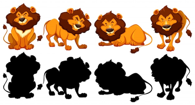 Silhouette, color and outline version of lions