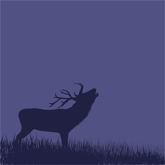 Silhouette of a deer standing on a hill at night.