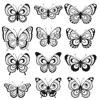 실루엣 우아한 나비 흰색 배경에 고립