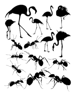 Silhouette of flamingo and ants