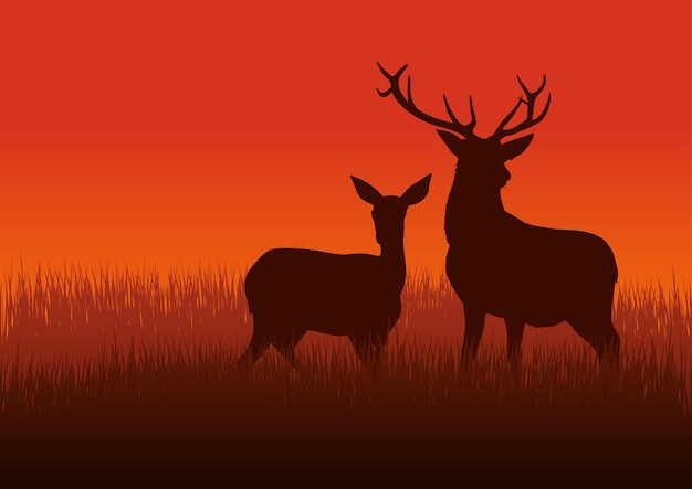 Silhouette illustration of a deer and doe on meadow