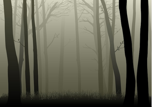 Silhouette illustration of misty woods