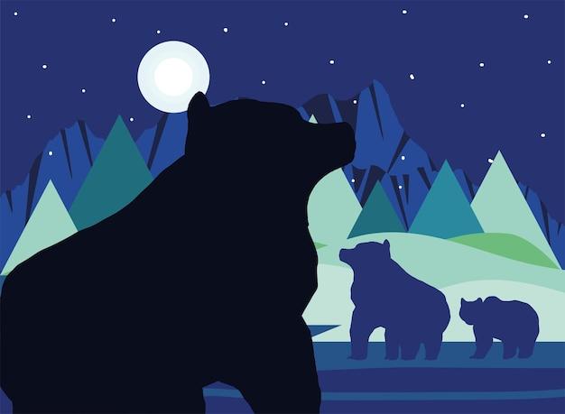 Silhouette night bears
