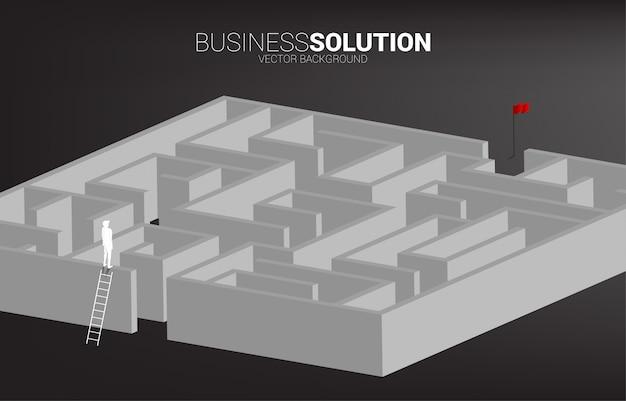 사다리와 미로의 상단에 서 사업가의 실루엣. 문제 해결 및 솔루션 전략에 대한 비즈니스 개념