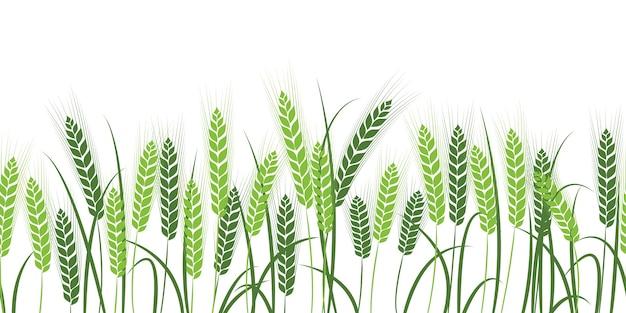 小麦のシルエット。白い背景の上のフィールドで小麦。