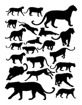 Silhouette of panther