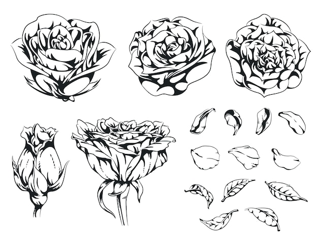 シルエットローズ手描き花フローラルモノクローム